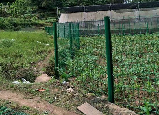 重庆桃形柱护栏网